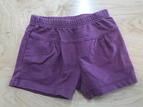 5 Y Tea Collection Girls Purple Shorts