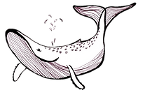 freshwater whale blue.png