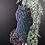 Thumbnail: Fruit Bat