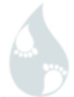 filigrane logo.png