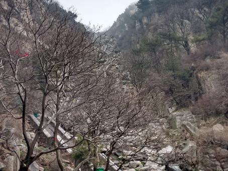 03 dias em Taishan / Tai ´An e a Montanha dos 100 anos