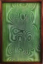 -Rhizophora mangle, Chlorophyll.jpg