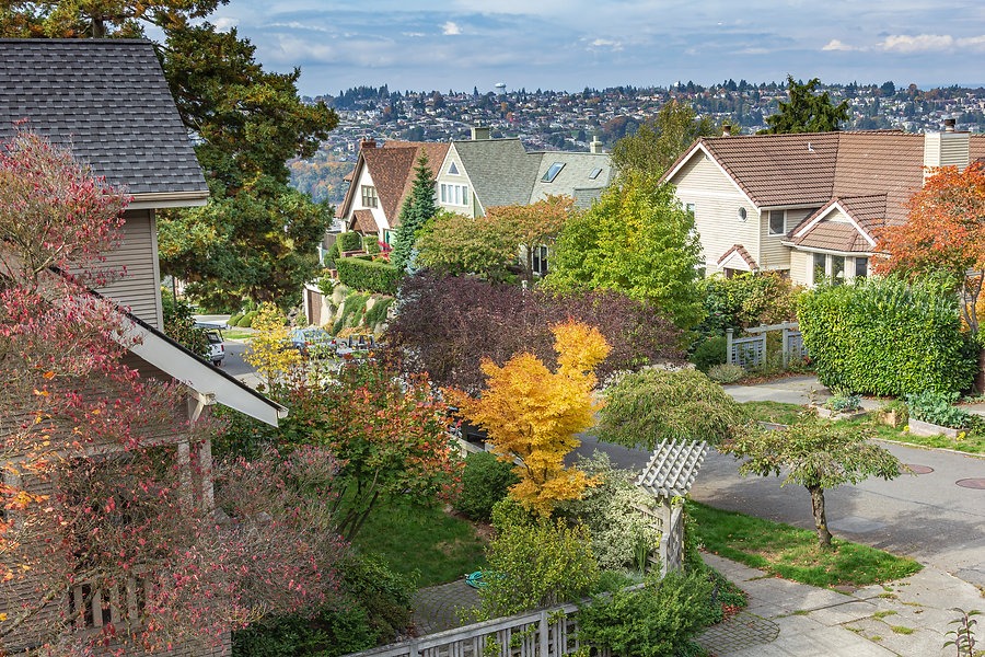 Residential neighborhood and fall colors