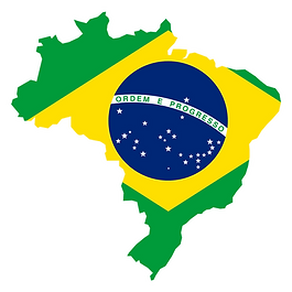 Outline of brazil filled with map