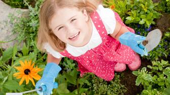 5 Fine Motor Activities: Summertime Garden!