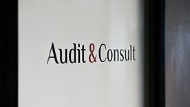 Audit Consult