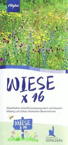 17-01-01 - Projekt-Flyer_Wiese_x16.jpg
