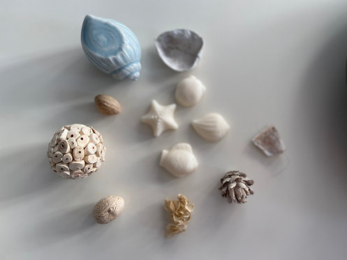 Seashore Wax Melts
