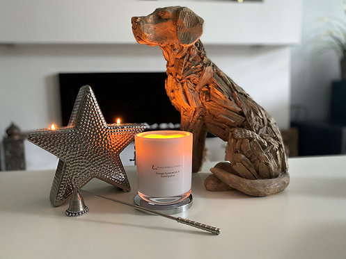 Orange Spearmint & Eucalyptus