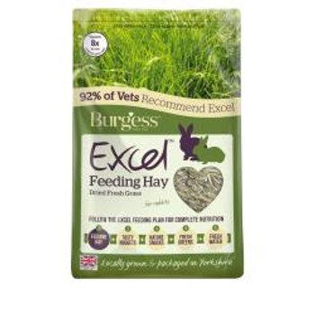 Burgess Feeding Hay Dried Grass