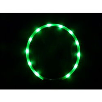 Animate LED Loop Green