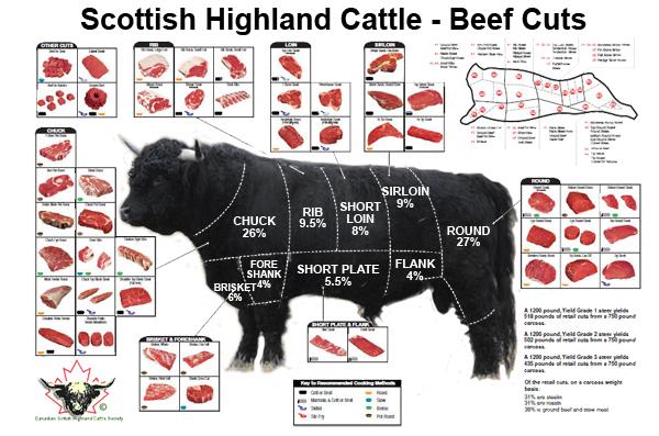 SHC-beef-chart.png