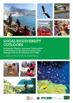 Indigenous Peoples' and Local Communities' Contributions to the Implementation of the Strategic Plan