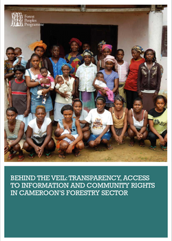 Behind the Veil: Transparency, Access to Information and Community Rights in Cameroon's Forestry Sec
