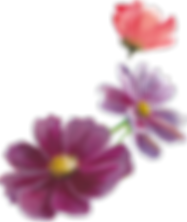 Home_FlowerBorder_FrontRight_trimmed.png
