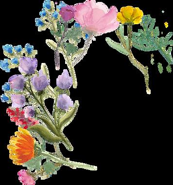 Home_FlowerBorder_BackLeft.png