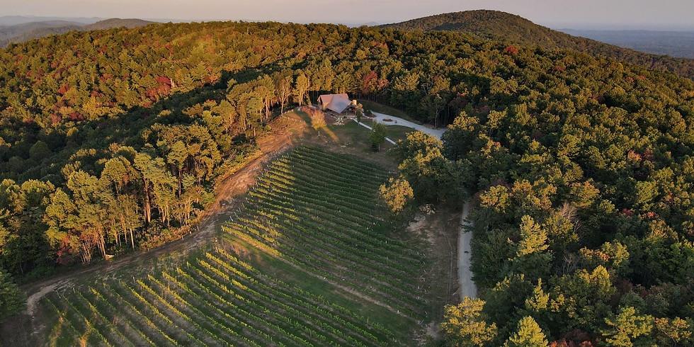 Wildcraft & Wine: Spring Foraging