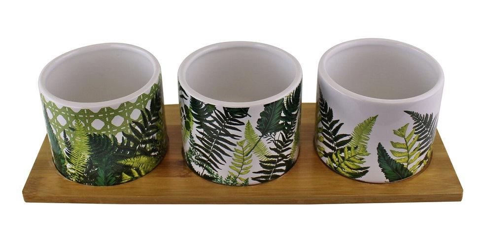 Fernology Ceramic and Wooden Mezze Set