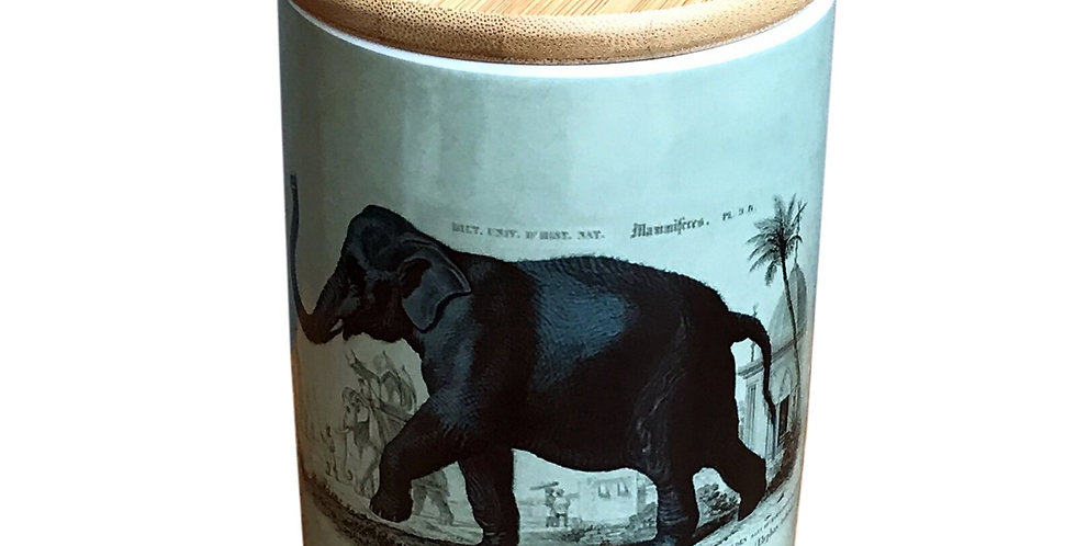 Ceramic Canister With Elephant Print