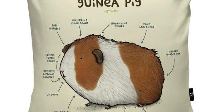 Anatomy of a Guinea Pig