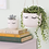 Thumbnail: EYES SHUT HANGING PLANTER