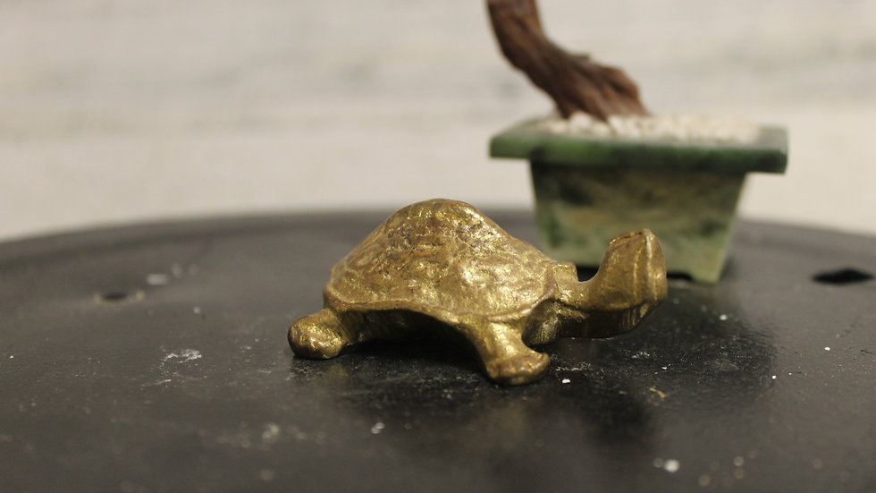 Brass Turtle Figurine-(X-Small)