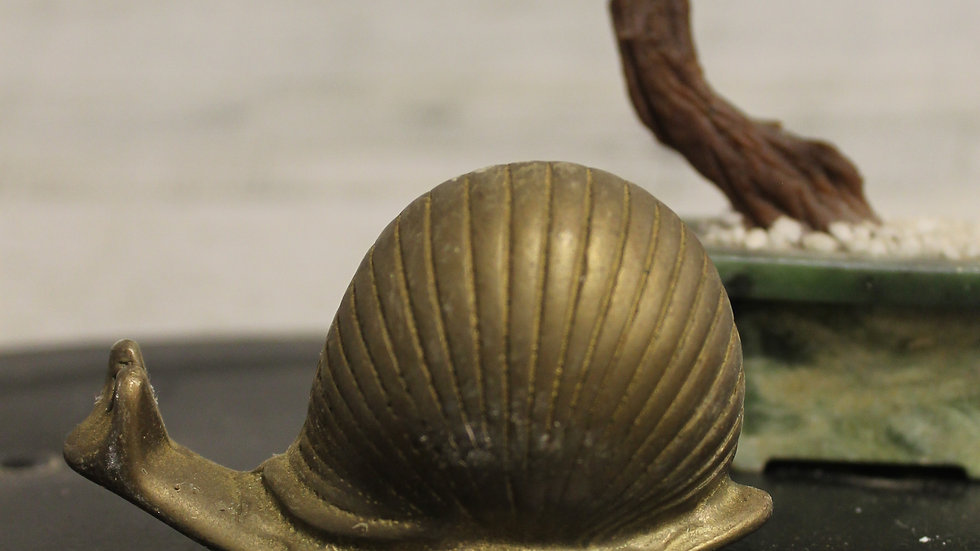 Brass Snail Figurine-Small