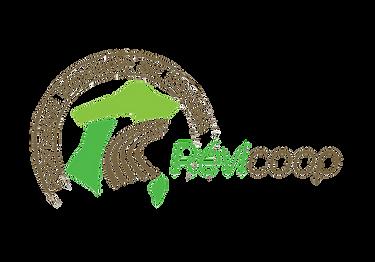 Logo REVICOOP (sans fond).png