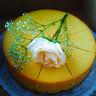 Passionate Cheesecake.jpg