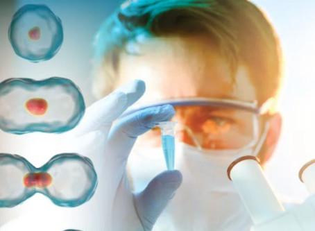 Secreciones Toxicas en las células senescentes. Rápido envejecimiento