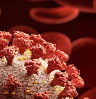 ¿Vacunarte evitará a que contagies? Acabemos con el virus.