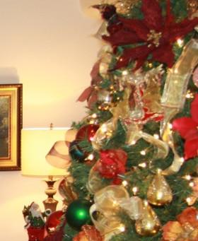 A propósito de la Navidad y el Covid19
