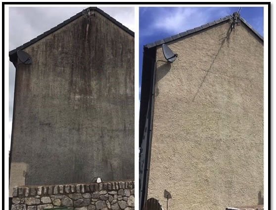 Soft Wash Render Cleaning
