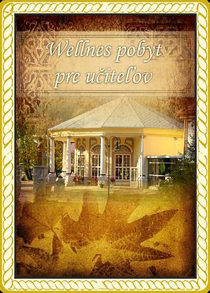 Obrazok wellness.png