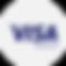 payment-visaelectron.png