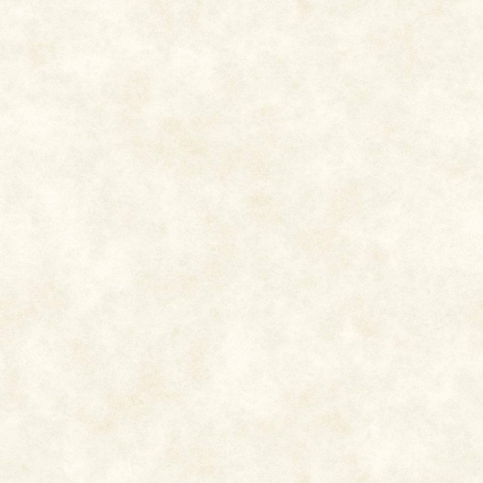 subtle_parchment_paper_natural_02.jpg