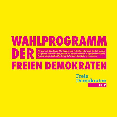 FDP_Zitat_04.png