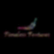 TT Logo Timeless Textures V5 no border U