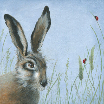Hare and Ladybird