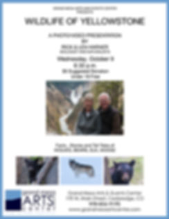 WILDLIFE OF YELLOWSTONE FLYER.jpg