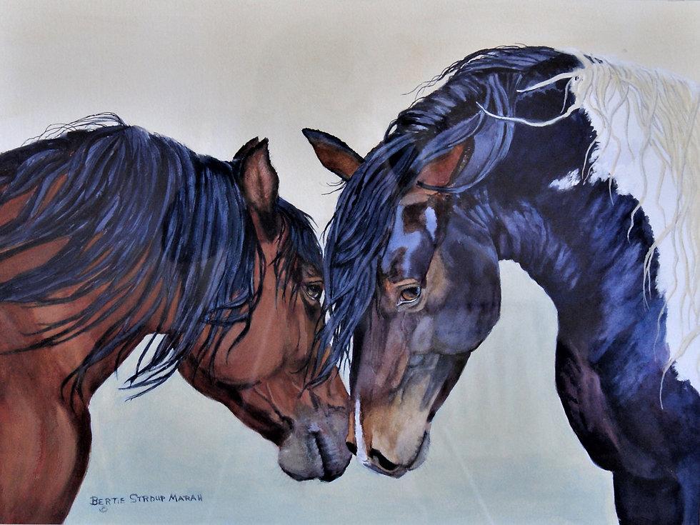 Bertie Horse Pals.JPG