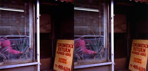 101_2_Z_TAX LADY ELBOW NYC 2108_SBS.jpg