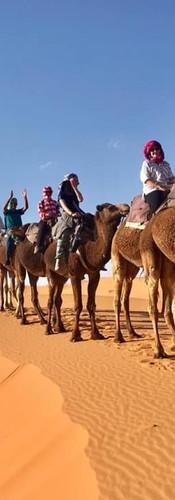 Marrakesh & Sahara Desert.jpg