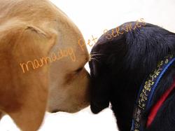 Pierro+kiss+gucci.jpg 2013-7-28-15:9:48