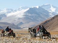 В Госдуме готовятся обсуждать регистрацию кочевников