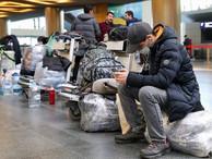 МВД назвало основные причины запрета на въезд в РФ иностранным гражданам