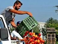 Медведев определил список турецких продуктов, запрещенных к ввозу в Россию