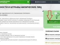 Новый сервис для иностранцев «Узнай свою задолженность» запустила ФТС России