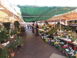 Cours Saleya Marché aux fleurs