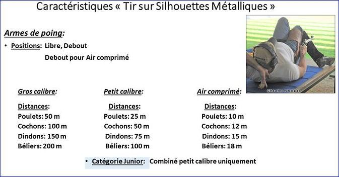 Capture Silouhette Métal2.JPG